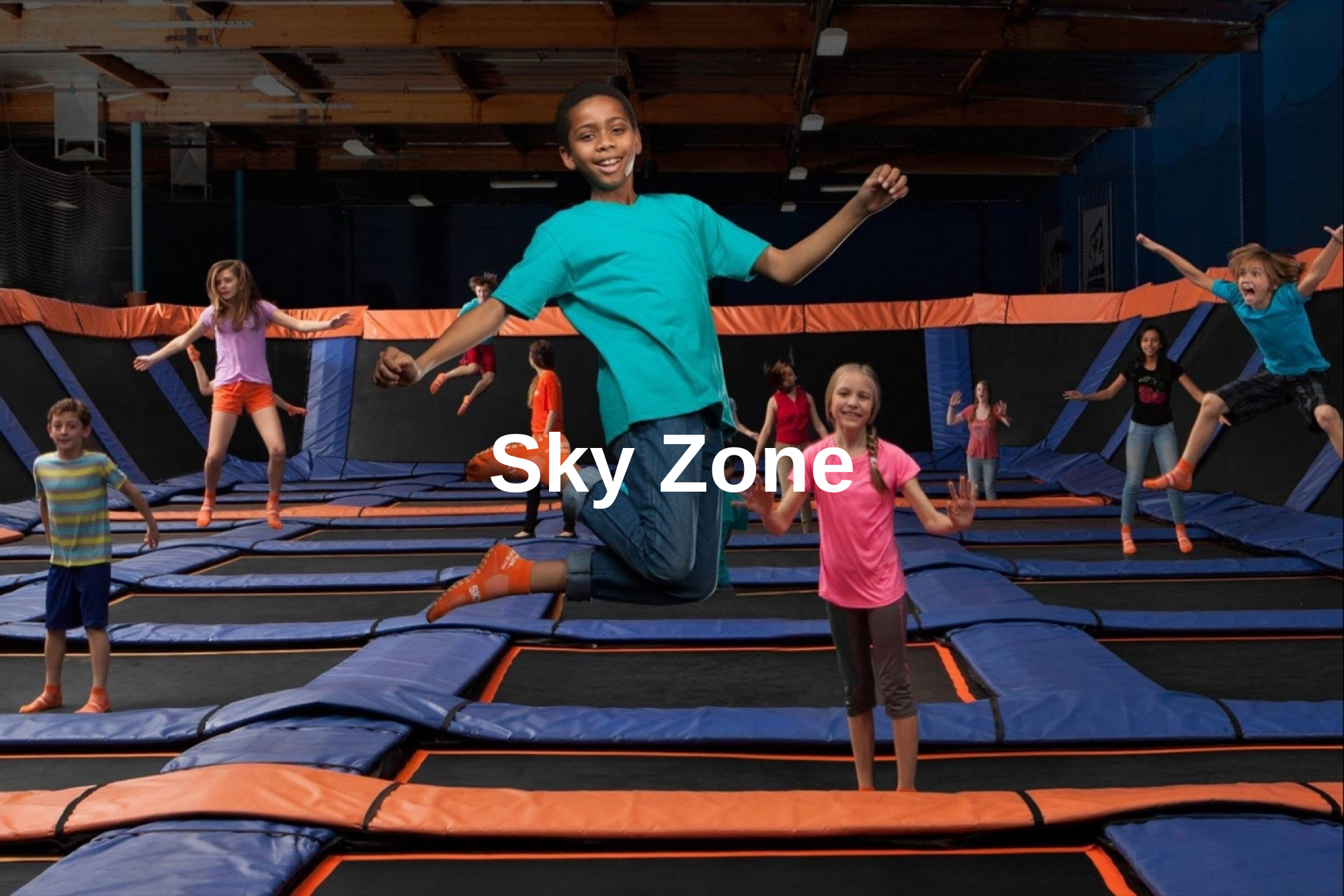 Sky Zone.png